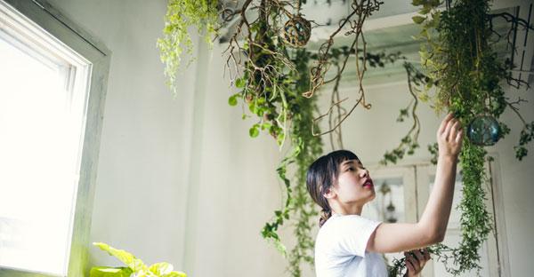 沖縄の家づくり☆おしゃれに演出する観葉植物スタイル